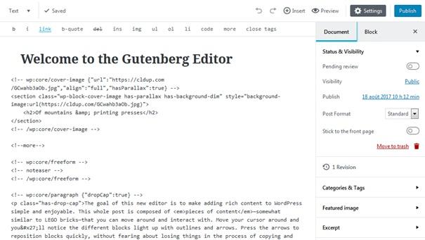 Vue côté code avec l'extension Gutenberg de WordPress