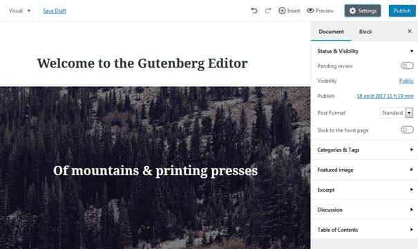 Extension Gutenberg pour WordPress - L'interface